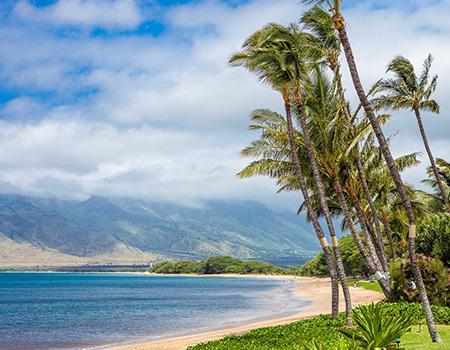 South Maui Beaches - Maui Things To Do